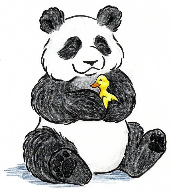 Panda 167 panda dessin - Dessins de panda ...